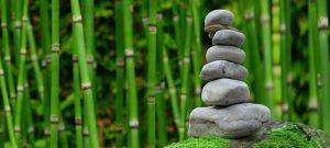 meditacija zen vrt