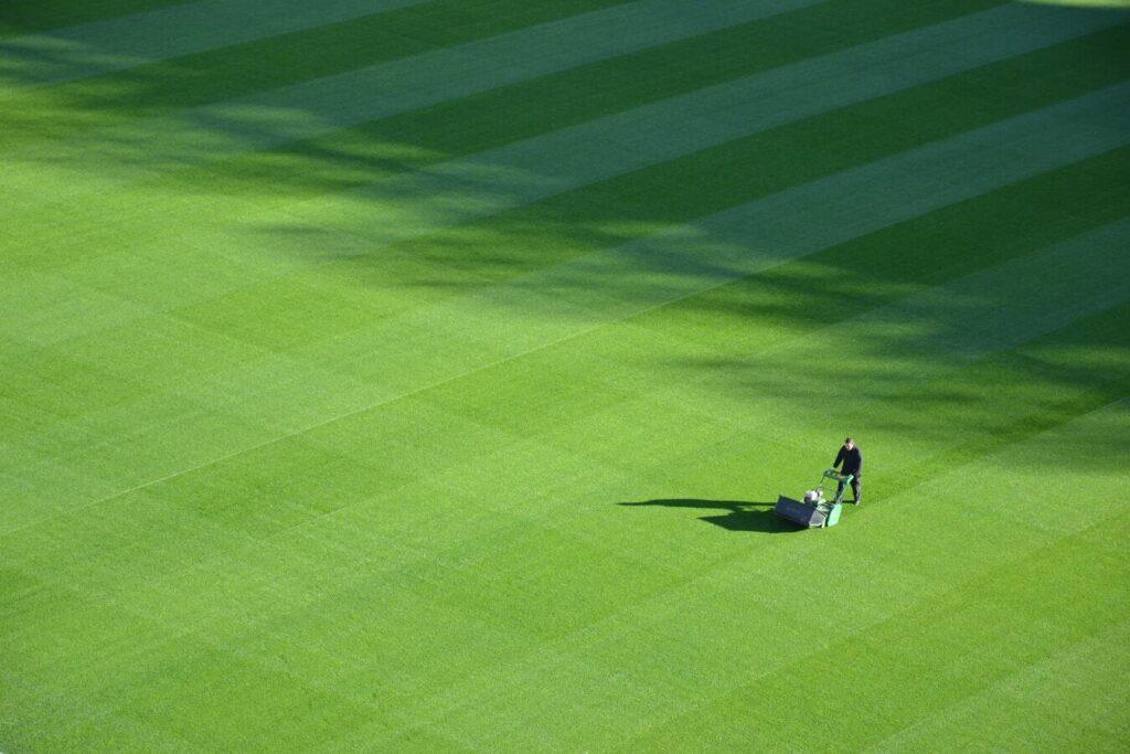 Najeti vrtnar kosi zeleno travo.