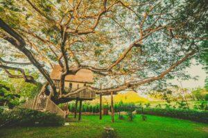 Otroška hišica na drevesu.